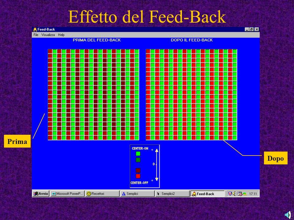 Effetto del Feed-Back Prima Dopo