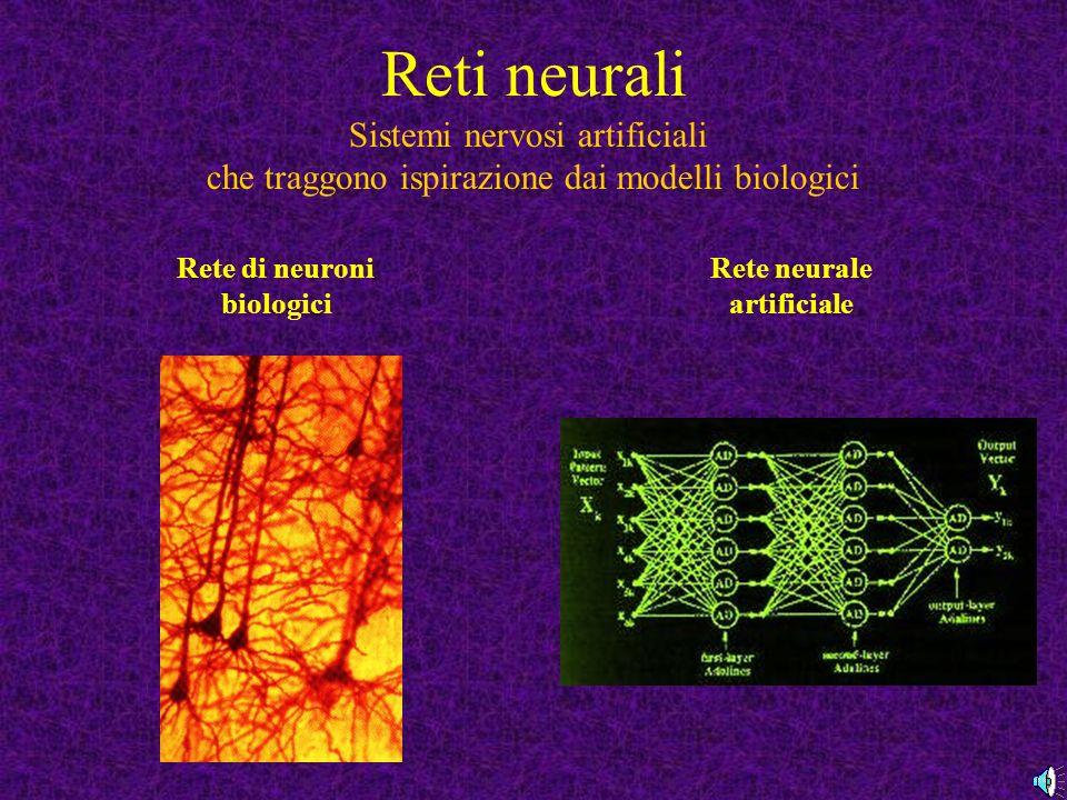 Rete di neuroni biologici Rete neurale artificiale