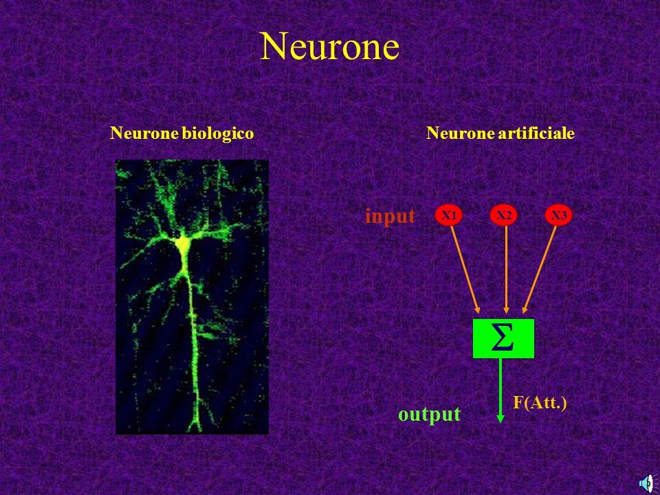Neurone  input output Neurone biologico Neurone artificiale F(Att.)
