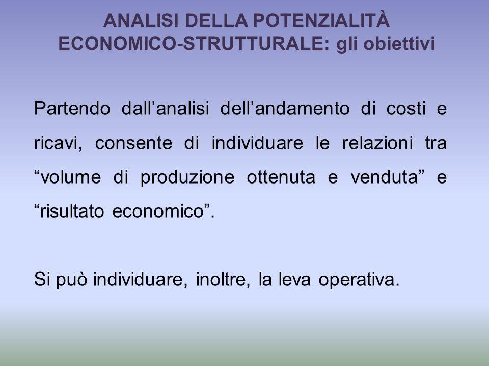 ANALISI DELLA POTENZIALITÀ ECONOMICO-STRUTTURALE: gli obiettivi