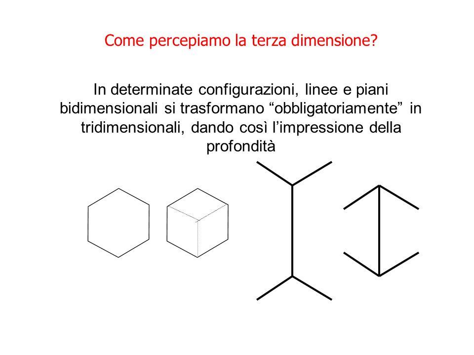 Come percepiamo la terza dimensione