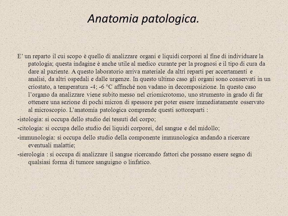Anatomia patologica.