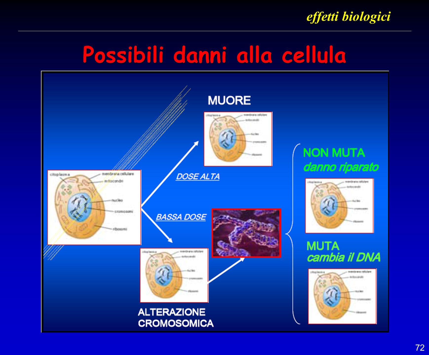Possibili danni alla cellula