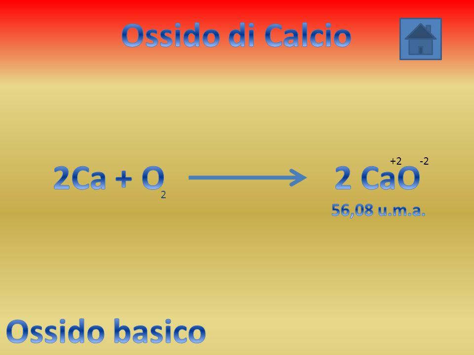 Ossido di Calcio 2Ca + O 2 CaO Ossido basico