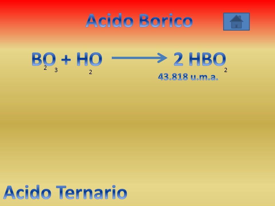 Acido Borico BO + HO 2 HBO Acido Ternario