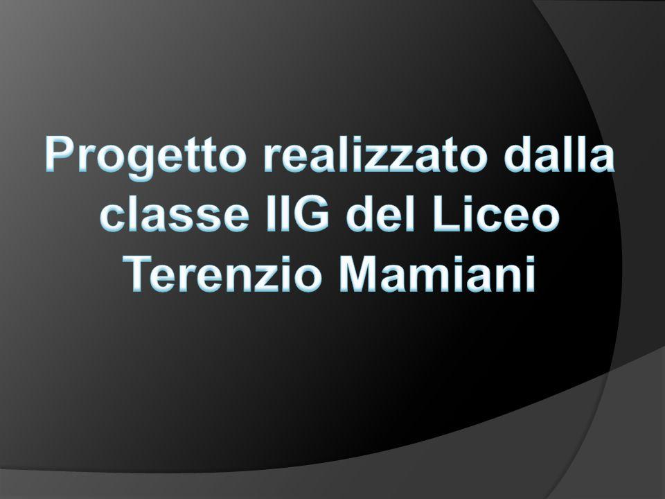 Progetto realizzato dalla classe IIG del Liceo Terenzio Mamiani