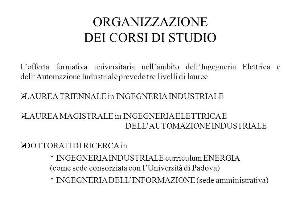 ORGANIZZAZIONE DEI CORSI DI STUDIO