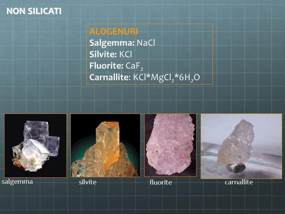 ALOGENURI Salgemma: NaCl Silvite: KCl Fluorite: CaF2