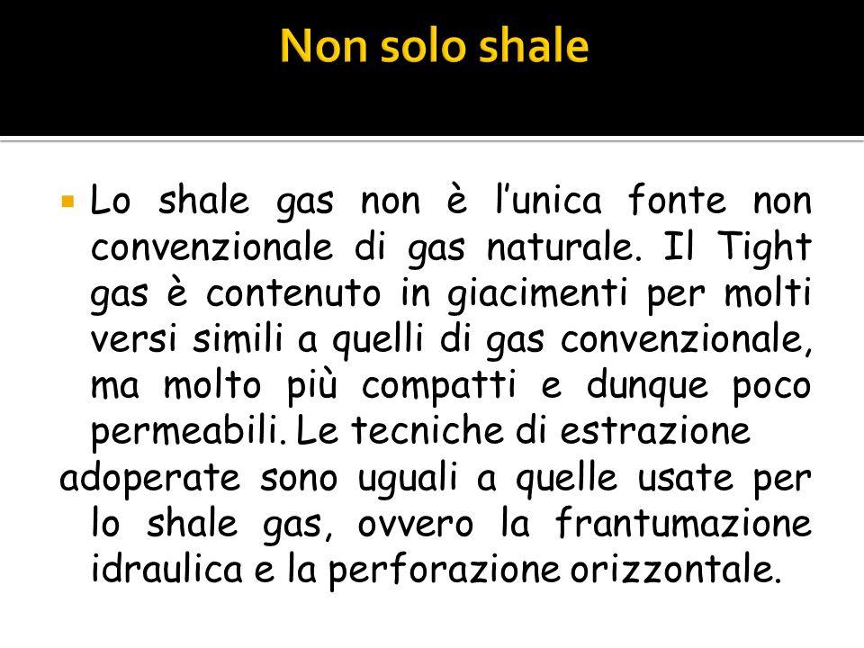 Non solo shale
