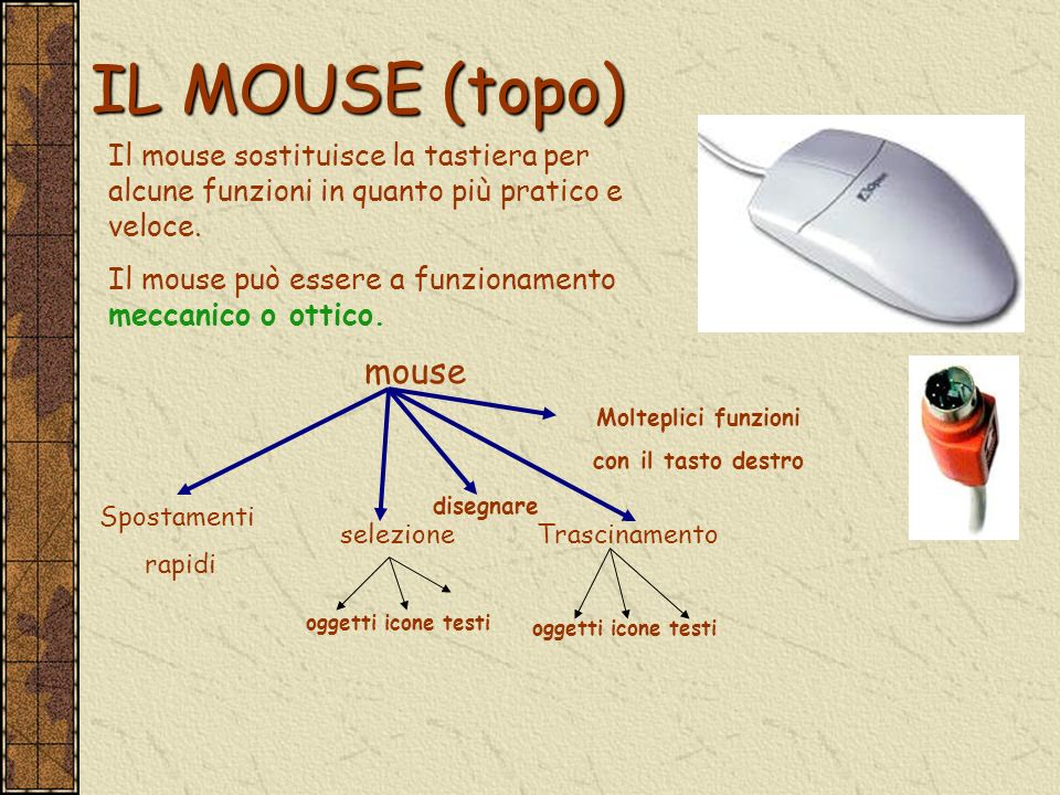 IL MOUSE (topo) Il mouse sostituisce la tastiera per alcune funzioni in quanto più pratico e veloce.