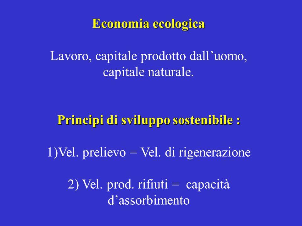 Principi di sviluppo sostenibile :