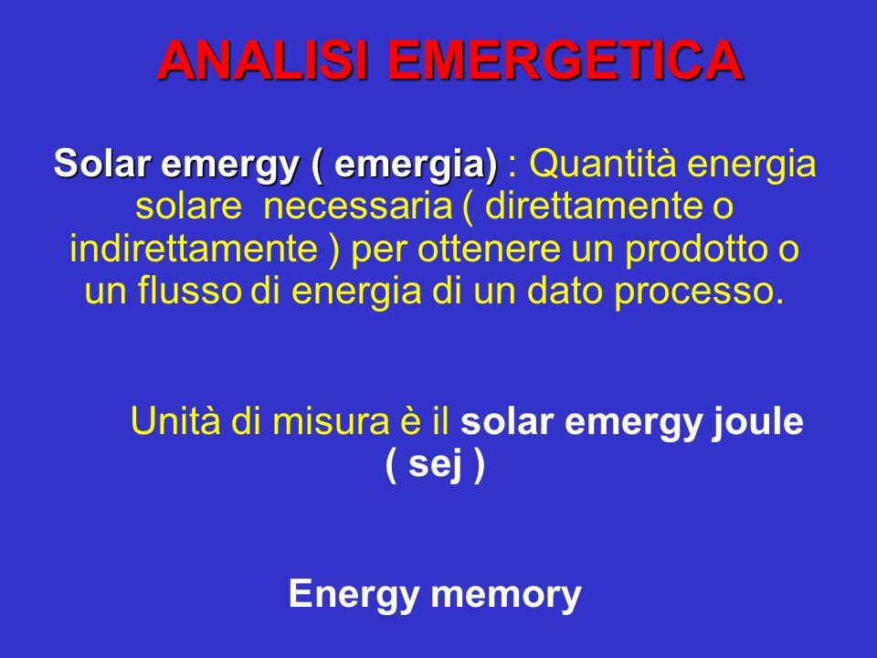 Unità di misura è il solar emergy joule ( sej )