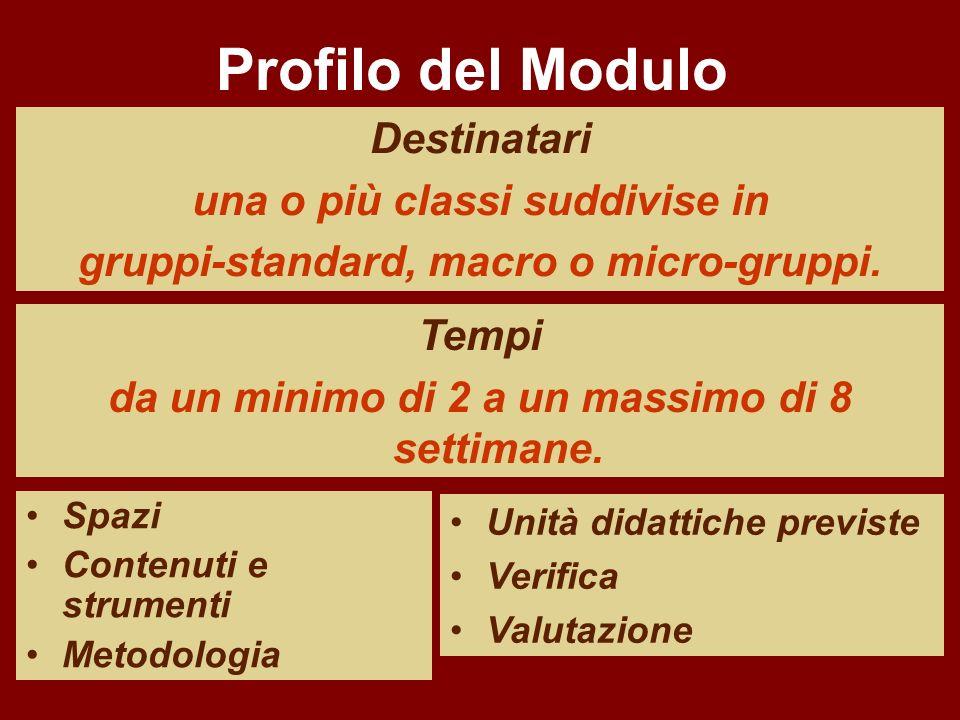 Profilo del Modulo Destinatari una o più classi suddivise in