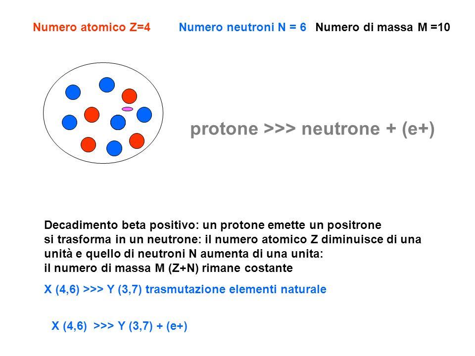 protone >>> neutrone + (e+)