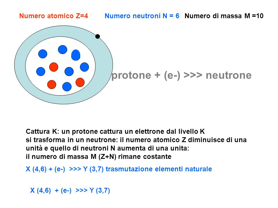 protone + (e-) >>> neutrone