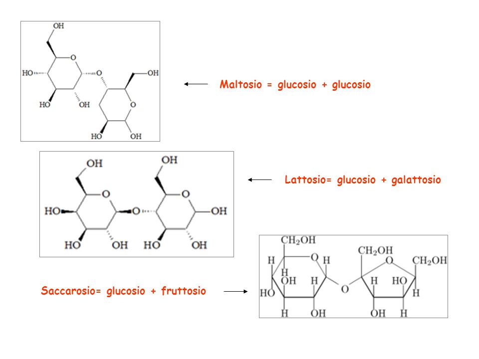 Maltosio = glucosio + glucosio
