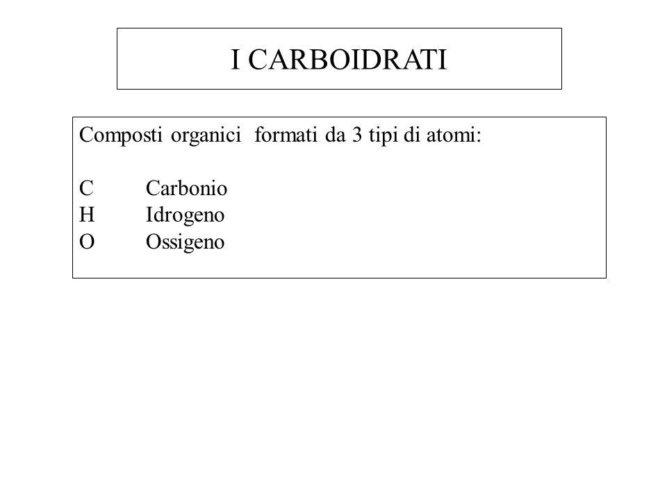 I CARBOIDRATI Composti organici formati da 3 tipi di atomi: C Carbonio
