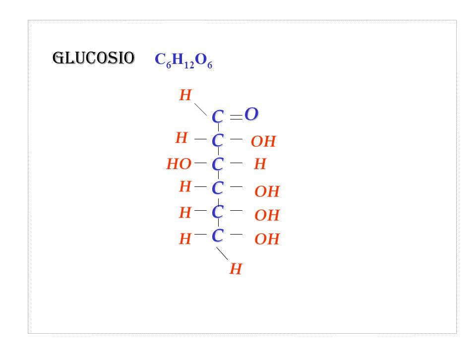 Glucosio C6H12O6 H C O H OH HO H H OH H OH H OH H