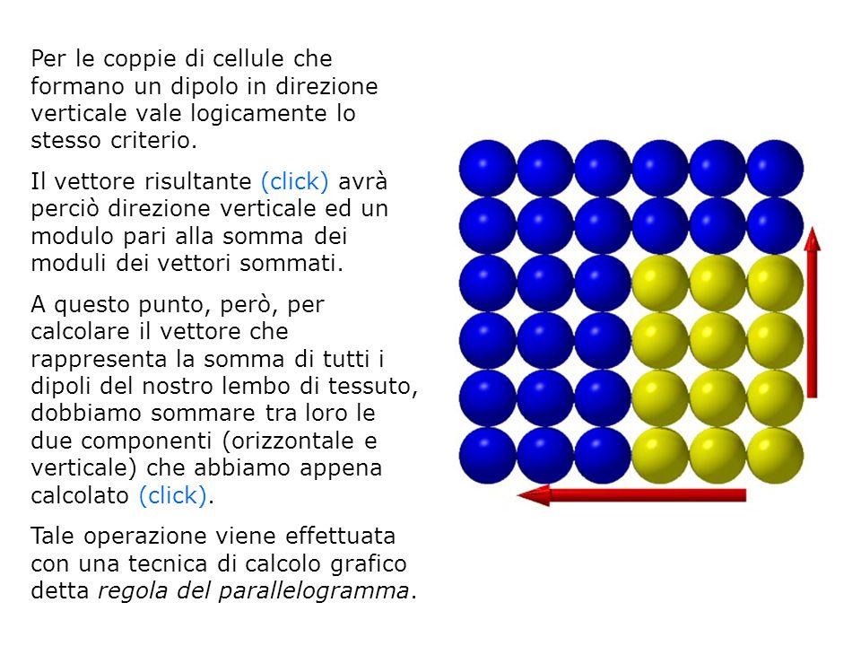 Per le coppie di cellule che formano un dipolo in direzione verticale vale logicamente lo stesso criterio.