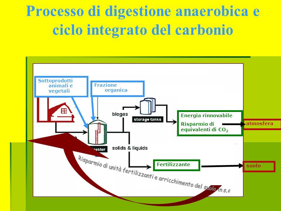 Processo di digestione anaerobica e ciclo integrato del carbonio