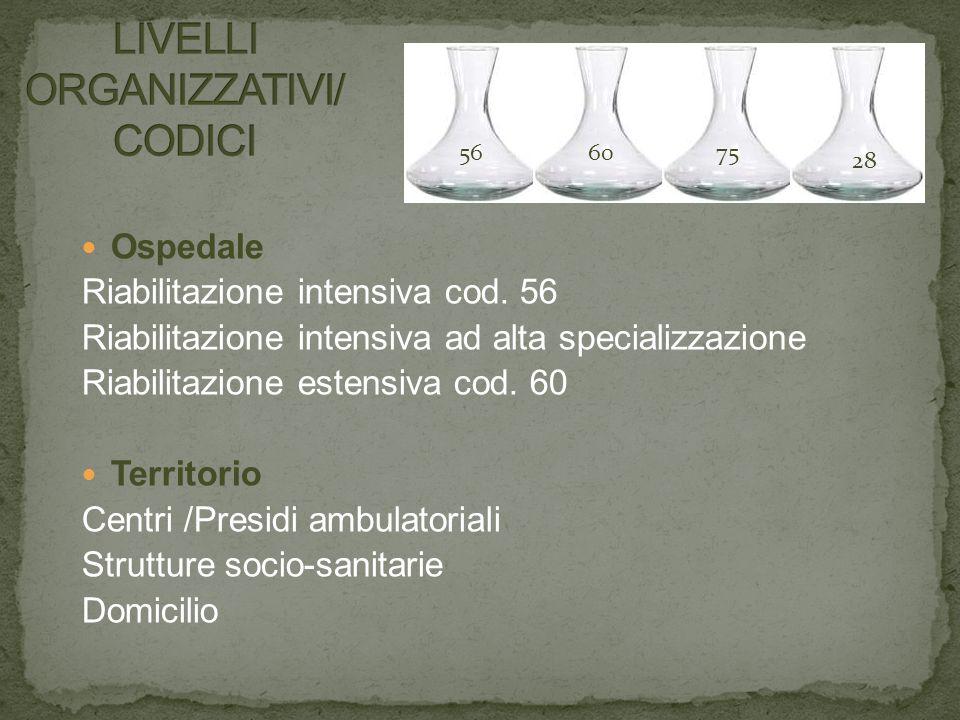 LIVELLI ORGANIZZATIVI/ CODICI
