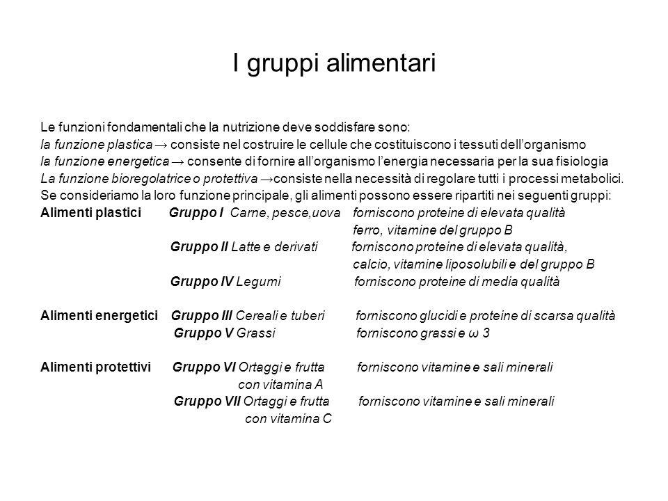 I gruppi alimentari Le funzioni fondamentali che la nutrizione deve soddisfare sono: