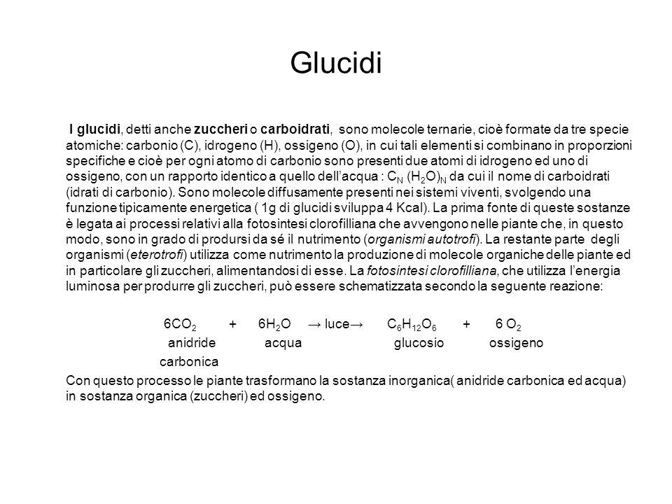 Glucidi
