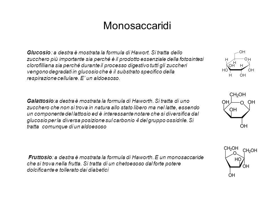 Monosaccaridi