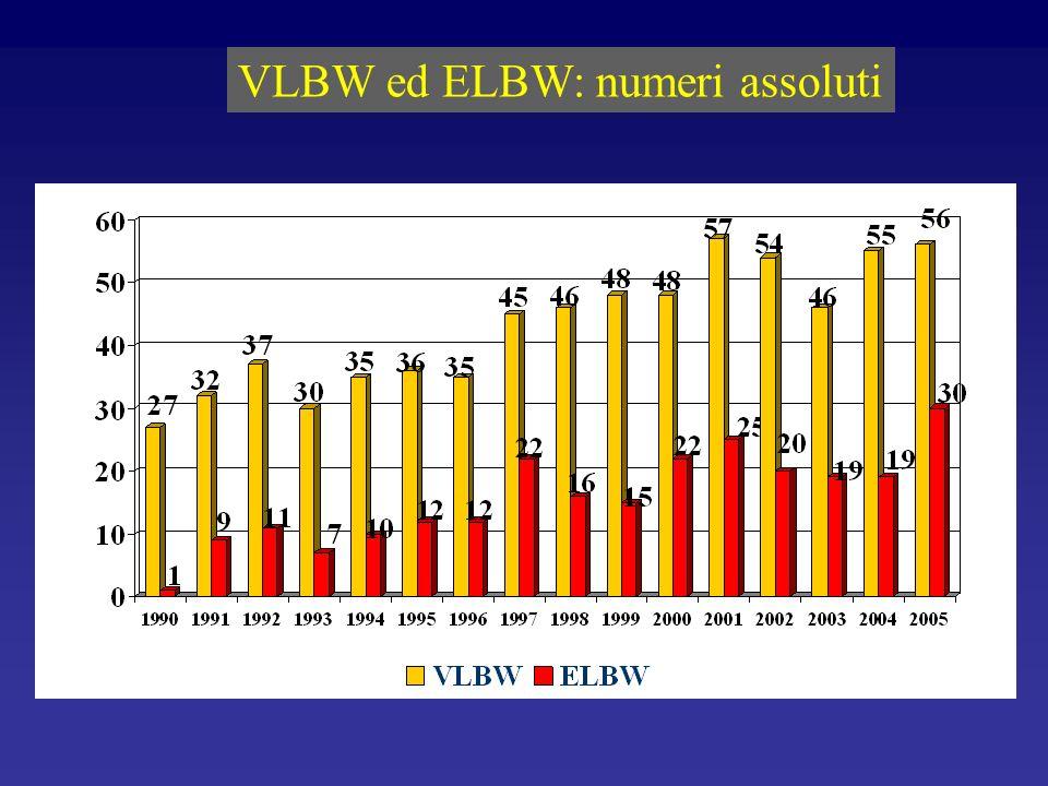 VLBW ed ELBW: numeri assoluti