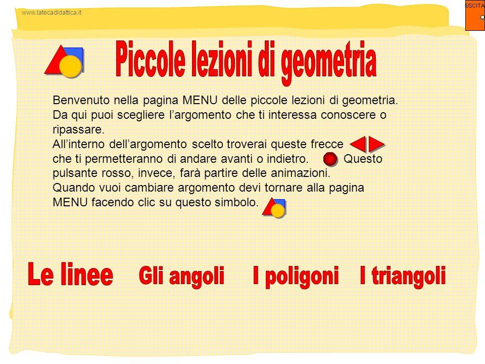 Piccole lezioni di geometria