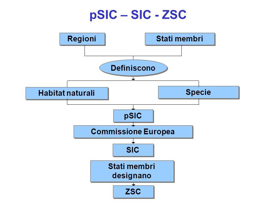 Stati membri designano