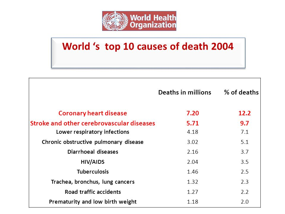World 's top 10 causes of death 2004