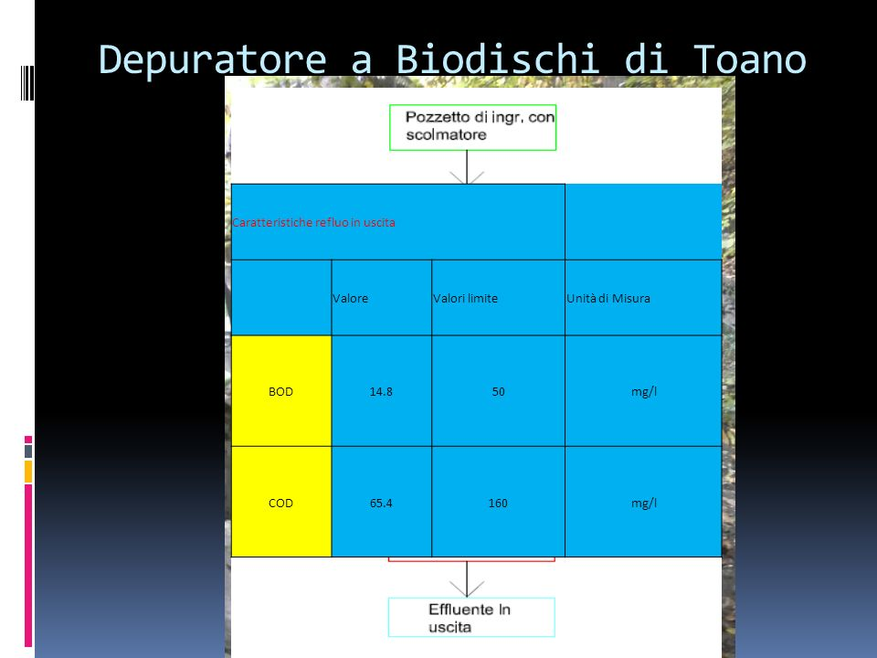Depuratore a Biodischi di Toano