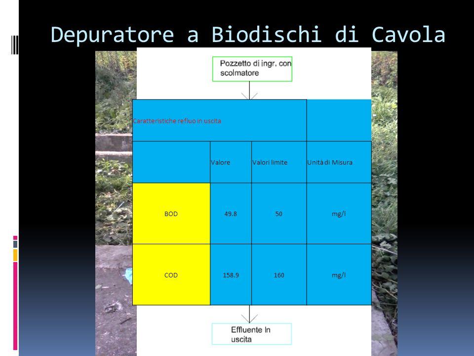 Depuratore a Biodischi di Cavola