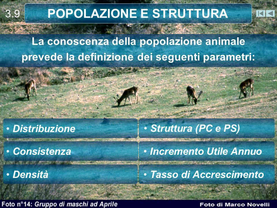 POPOLAZIONE E STRUTTURA
