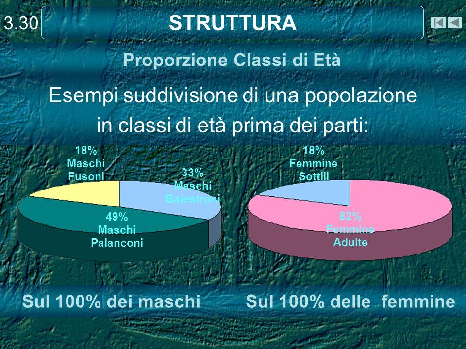 Proporzione Classi di Età