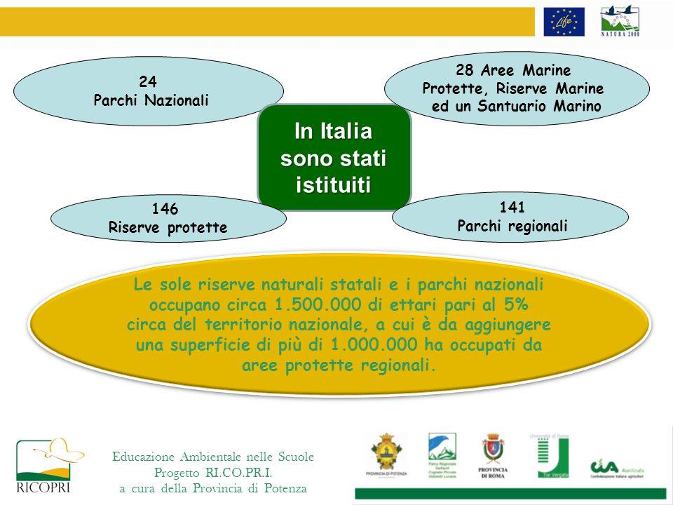 Protette, Riserve Marine In Italia sono stati istituiti
