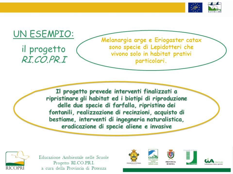 UN ESEMPIO: il progetto RI.CO.PR.I