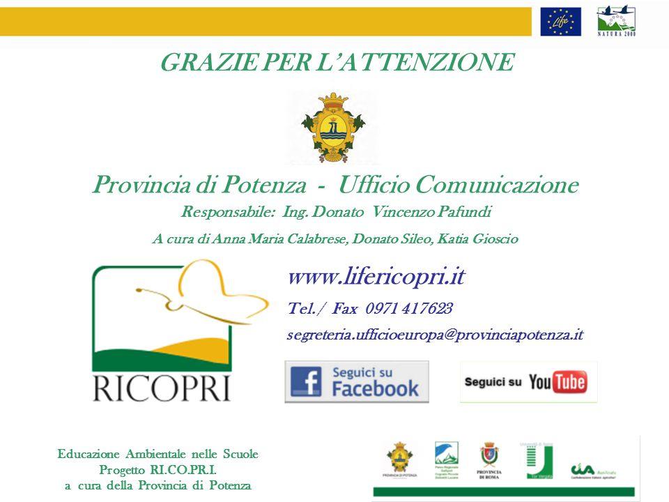 GRAZIE PER L'ATTENZIONE Provincia di Potenza - Ufficio Comunicazione