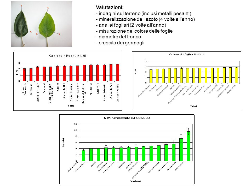 Valutazioni: - indagini sul terreno (inclusi metalli pesanti) - mineralizzazione dell'azoto (4 volte all'anno)