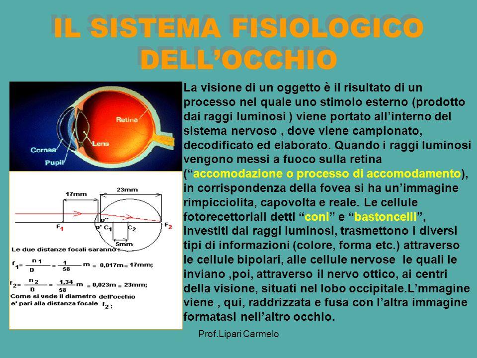 IL SISTEMA FISIOLOGICO DELL'OCCHIO