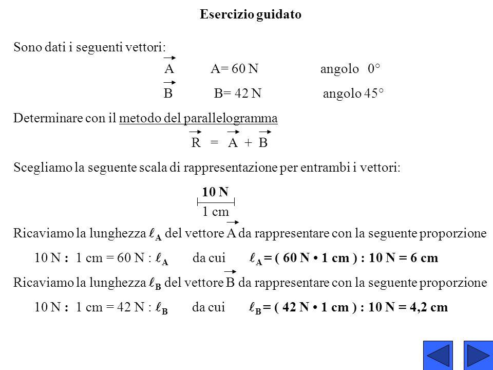 Esercizio guidato Sono dati i seguenti vettori: A A= 60 N angolo 0°