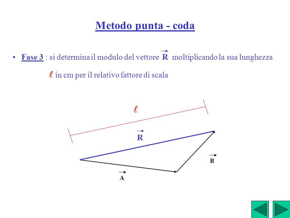 Metodo punta - coda • Fase 3 : si determina il modulo del vettore R moltiplicando la sua lunghezza.