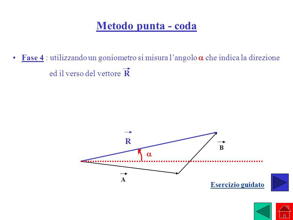 Metodo punta - coda • Fase 4 : utilizzando un goniometro si misura l'angolo a che indica la direzione.