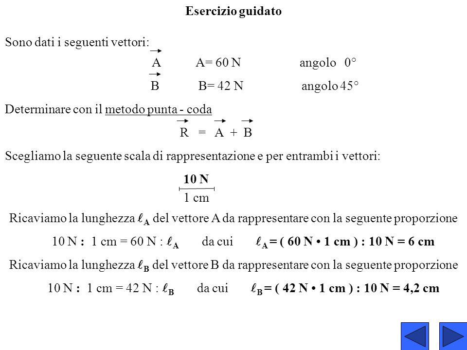 Sono dati i seguenti vettori: A A= 60 N angolo 0°