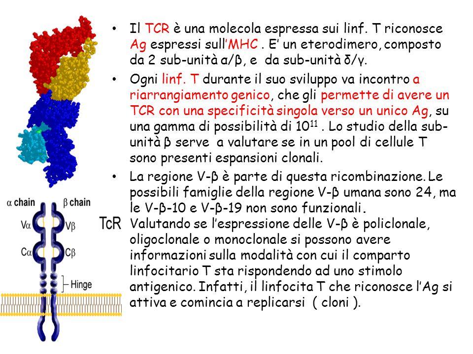 Il TCR è una molecola espressa sui linf
