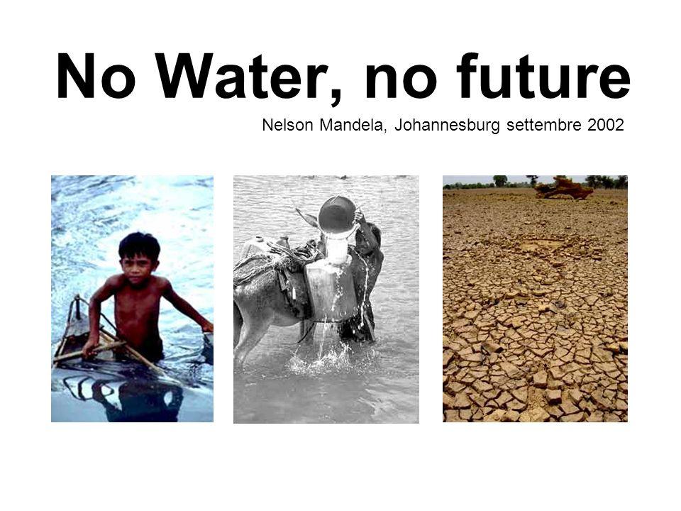 No Water, no future Nelson Mandela, Johannesburg settembre 2002