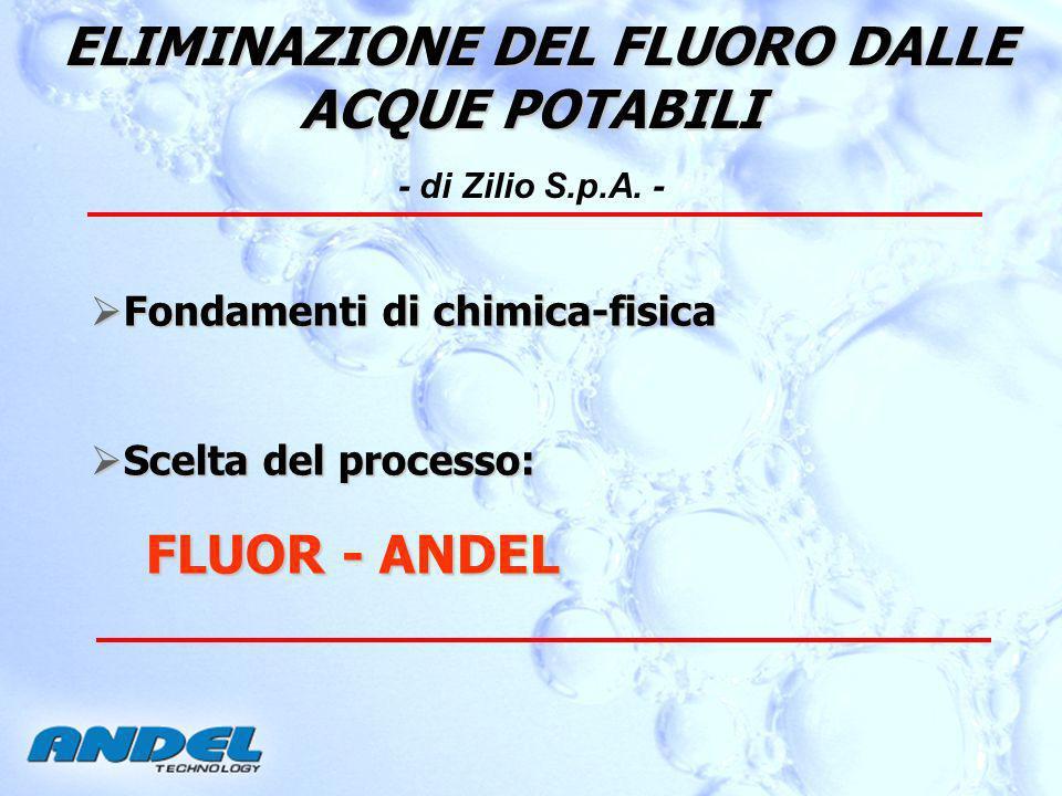 ELIMINAZIONE DEL FLUORO DALLE ACQUE POTABILI - di Zilio S.p.A. -