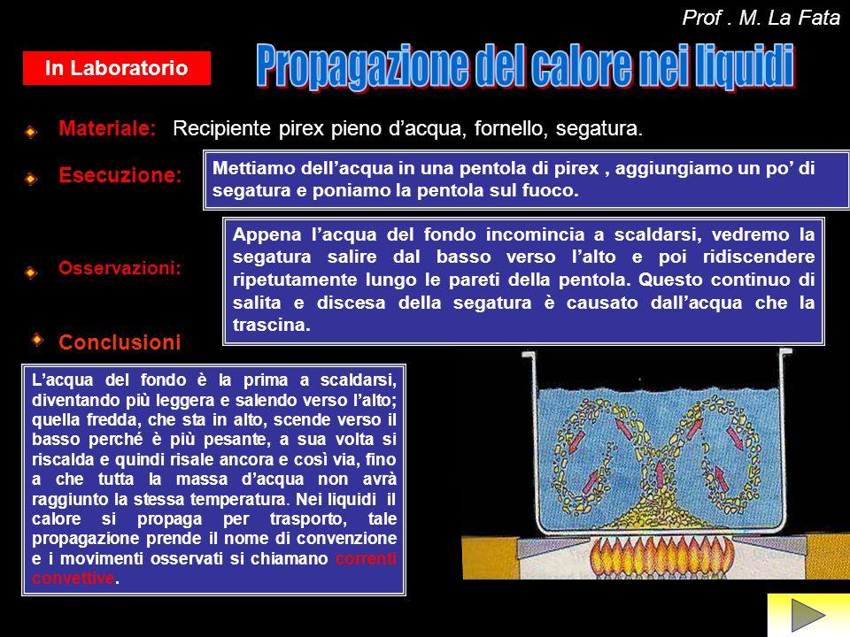Propagazione del calore nei liquidi
