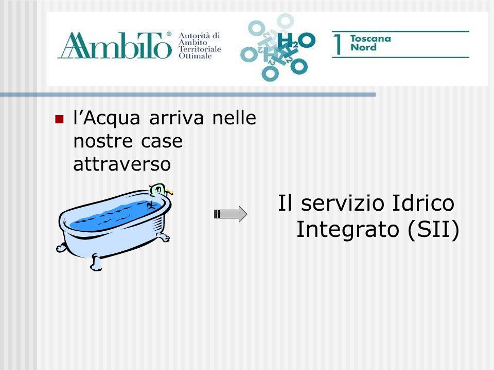Il servizio Idrico Integrato (SII)
